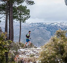 LMF 2019. Carreras Trail